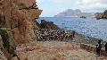 Haut Bugey VTT : Pierre LESY 2ème du Corsica Porto Bike Tour